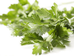 inside_products_italian_parsley